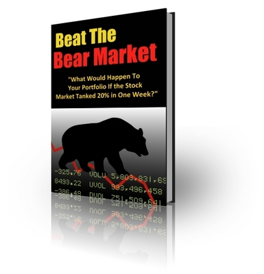 Product picture 10 Strategies to Beat Any Bear Market